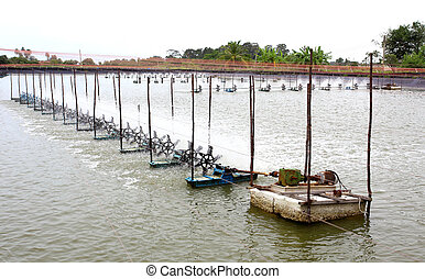 The aeration turbines in the shrimp farm for fresh water