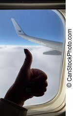 The aircraft wing during a flight. High quality FullHD footage.