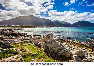 The algae, boulders and azure water of the Atlantic. Surroundings of Cape Town. Boulders Penguin Colony National Park, South Africa. The concept of ecotourism