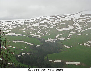 The Alpine meadows of Northwest caucasus