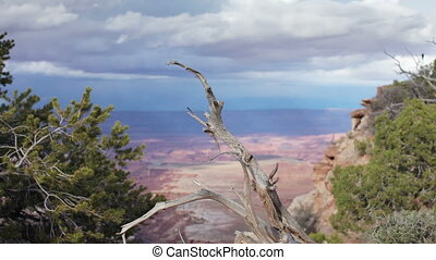 the amazing rock structures at canyonlands, utah, usa with a...
