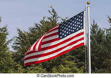 The American Flag Flying