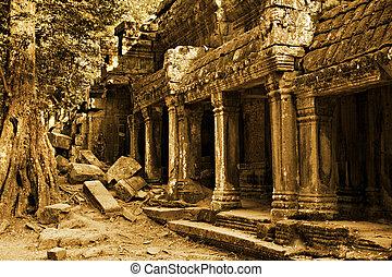 Angkor Wat - The ancient ruins of Ta Prohm at the Angkor Wat...