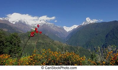 The Annapurna range in Nepal - The Annapurna range as seen...