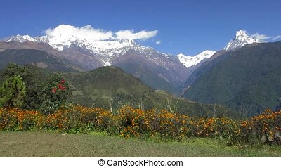 The Annapurna range in Nepal - The Annapurna range as seen...