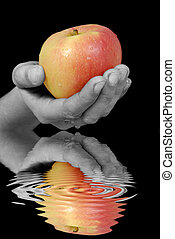 The apple - Apple is reflecting in the water