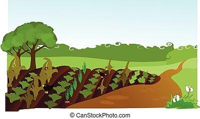 field - The arable field, the earth, forest belt.
