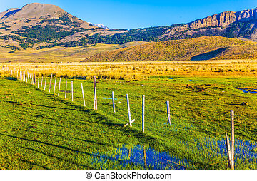The green grass field - The Argentine Patagonia. The huge...