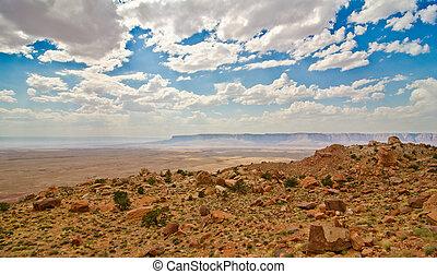 The arid beauty of the Arizona desert