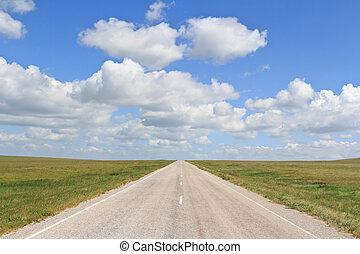 The asphalt road straight going beyond the horizon