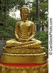 The attitude of meditation 1