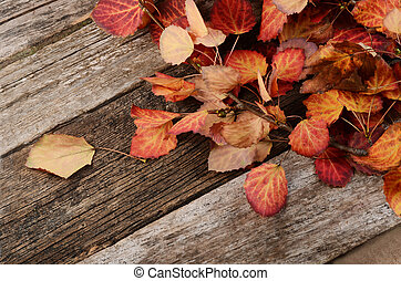 The autumn leaves on wooden background