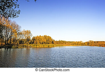 The autumn wood on the bank of the big beautiful lake