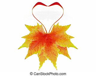 autumnal leaves heart shaped