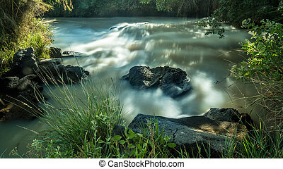 The Awash River flowing through the dense vegetation in the Rift Valley area of Ethiopia
