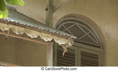 The awning and window of a classical-style house - A steady...