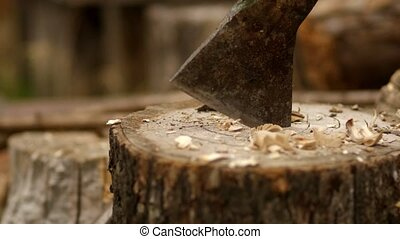 The axe hits the stump. It gets stuck in a tree stump. ...