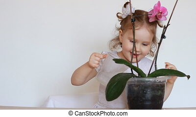 The baby girl and green plant orchid. A child watering a flower.