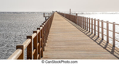 The background is a beautiful wooden long pier
