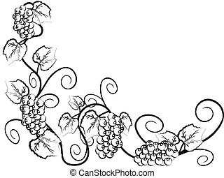Grape vine background with copy space