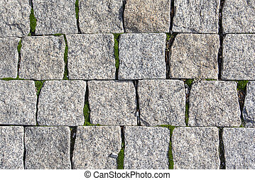 The background of the stone wall is gray, where moss grows