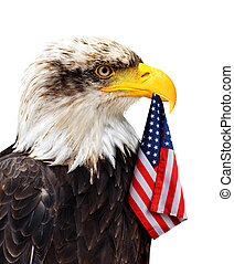 The Bald Eagle holds in the beak of the United States Flag.