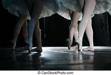 The ballerina during dance execution.