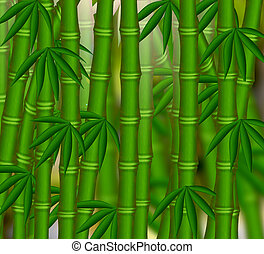 The Bamboo grove on green background.