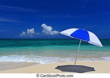 The beach and the beach umbrella