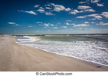 The beach in Sanibel, Florida.