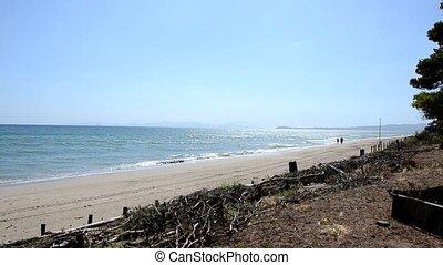The beach in summer