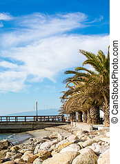 The Beach with palms in Paralia Katerini, Greece