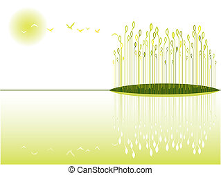 wetland view - the beautiful and peaceful wetland view