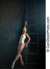 The beautiful ballerina posing against dark background - The...