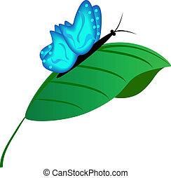 The beautiful blue butterfly on a green leaflet