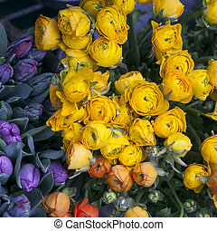 the beautiful bouquet buttercup with violet tulip