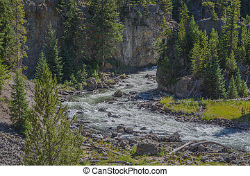 The beautiful Firehole River flowing through West Yellowstone in the Rocky Mountains of Wyoming
