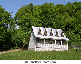 house on a background of a wood.