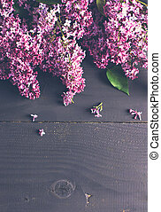 lilac flowers on a dark wooden background