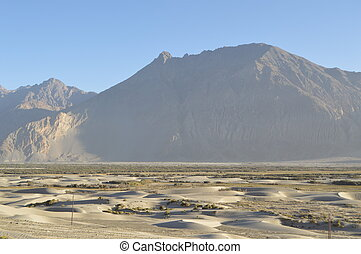 The Beautiful Sand Dunes of Ladakh