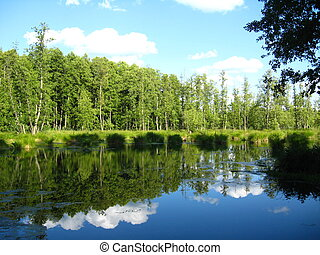 the beautiful summer landscape with