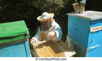 the beekeeper working in the apiary bees fly swarm multi...