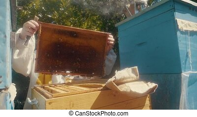 the beekeeper working in the apiary bees fly swarm multi colored beehive slow motion video. bee-maker beekeeper man working beeper wooden hives smoker device for repelling evil bees. agriculture beekeeping lifestyle concept bee