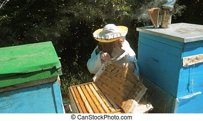 the beekeeper working in the apiary bees fly swarm multi colored beehive slow motion video. bee-maker lifestyle beekeeper man working of a smoke pipe beeper wooden hives smoker device for repelling evil bees. beekeeping concept agriculture bee