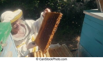 the beekeeper working in the apiary bees fly swarm multi colored beehive slow motion video. bee-maker beekeeper man working beeper wooden hives smoker device for repelling evil bees. agriculture lifestyle beekeeping concept bee