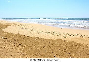 The Bentota Beach, Sri Lanka
