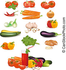 The big colorful group of vegetables. Photo-realistic vector...