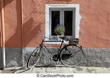 The bike in front of the window
