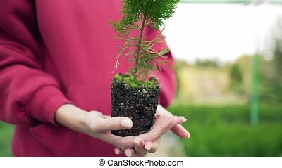 The biologist is holding a plant with pressed soil. ...