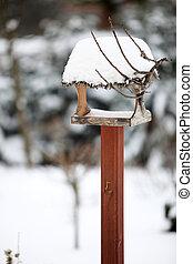 the bird feeder in winter